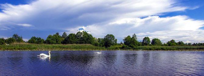 Щёлковское море!